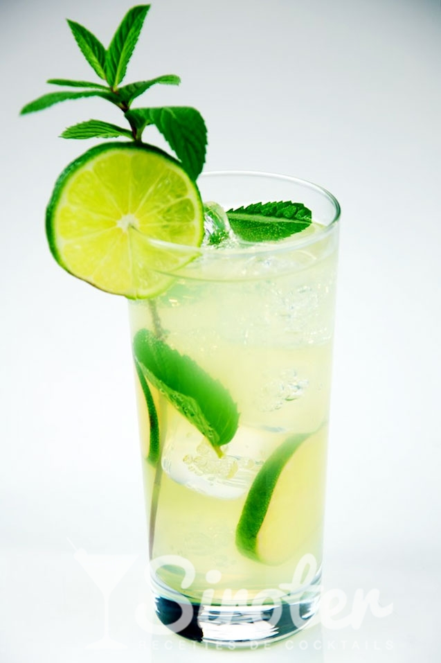 Virgin mojito no alcohol Cocktail : Recipe, instructions ...
